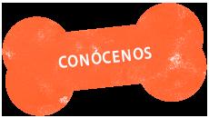 http://www.mokaimascotas.es/wp-content/uploads/2019/11/conócenos.png