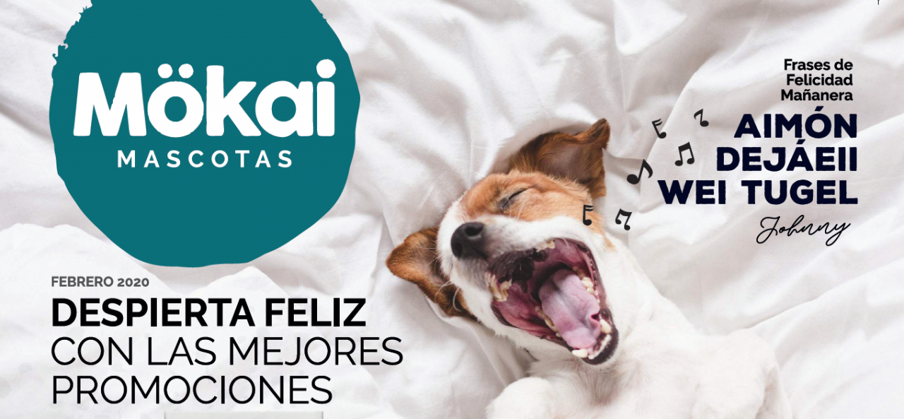 https://www.mokaimascotas.es/wp-content/uploads/2020/02/ofertas_fed_2020-1280x593.png