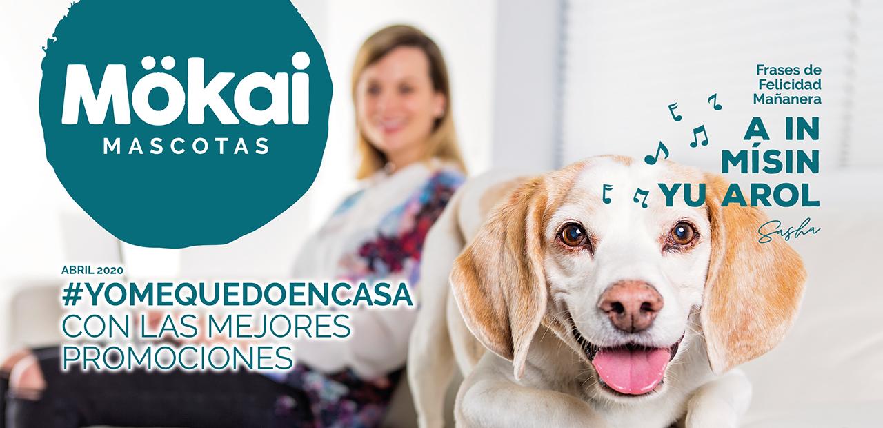 http://www.mokaimascotas.es/wp-content/uploads/2020/03/FOLLETO-MOKAI-ABRIL-alta-1.png