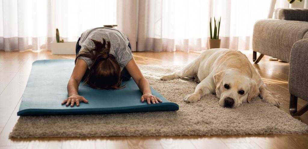 http://www.mokaimascotas.es/wp-content/uploads/2020/04/dog-yoga-1024x576-1.jpg