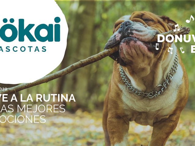 https://www.mokaimascotas.es/wp-content/uploads/2020/08/PORTADA-SEP-2020a-640x480.png