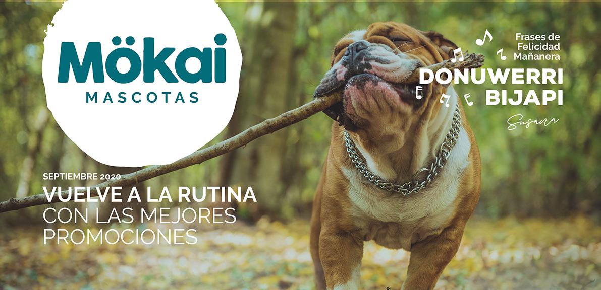https://www.mokaimascotas.es/wp-content/uploads/2020/08/PORTADA-SEP-2020a.png