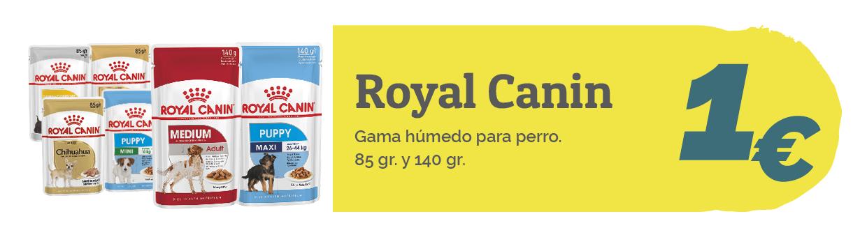 mokai banners octubre royal canin humedo