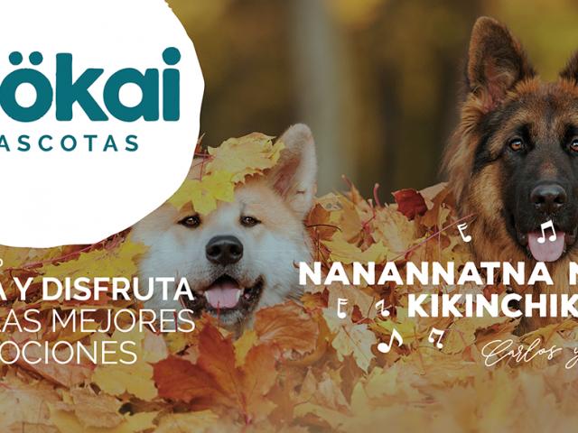 https://www.mokaimascotas.es/wp-content/uploads/2020/09/mokai-portada-octubre-640x480.png