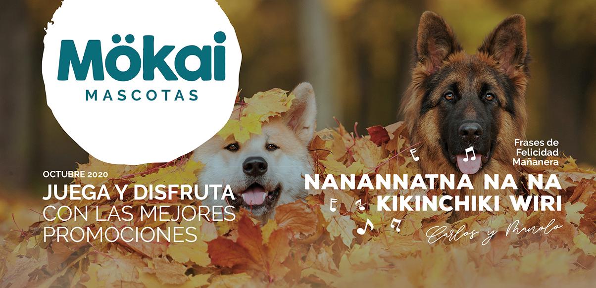 https://www.mokaimascotas.es/wp-content/uploads/2020/09/mokai-portada-octubre.png