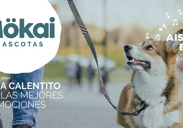 https://www.mokaimascotas.es/wp-content/uploads/2020/10/PORTADA-NOVIEMBRE-2020a-640x449.jpg