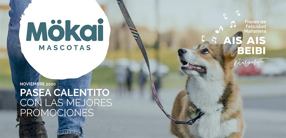 https://www.mokaimascotas.es/wp-content/uploads/2020/10/PORTADA-NOVIEMBRE-2020a.jpg