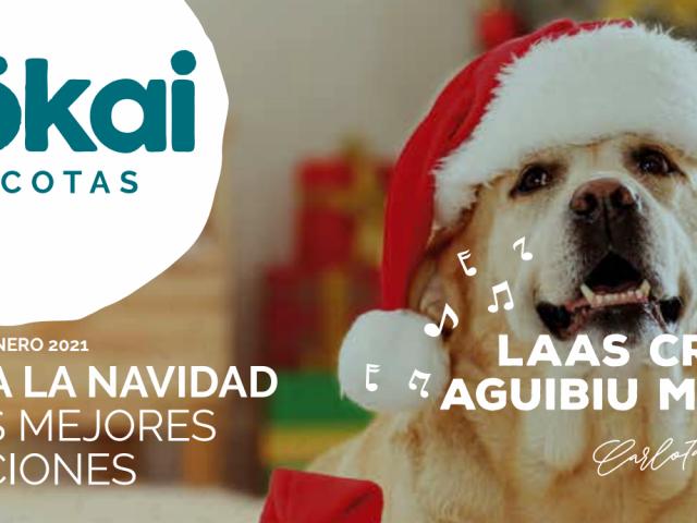 https://www.mokaimascotas.es/wp-content/uploads/2020/12/mokai_dic_enero_banner-640x480.png