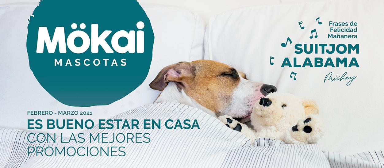 https://www.mokaimascotas.es/wp-content/uploads/2021/01/Folleto-MOKAI-FEBRERO-MARZO-1.png
