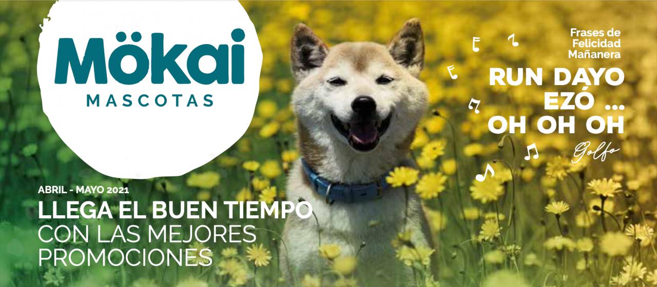 https://www.mokaimascotas.es/wp-content/uploads/2021/03/Captura-de-pantalla-2021-03-31-a-las-20.18.09-1280x560.png